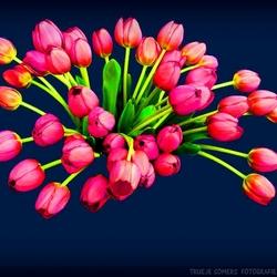 Pink Ribbon - 3 zie tekst onder foto