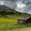 Alpenweide bij Hochkonig