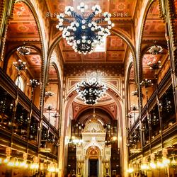 Grand Budapest Synachoge