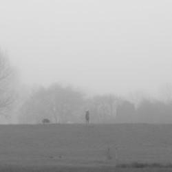 Mist in Onderdijk