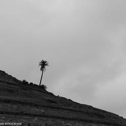 Eenzaamheid op Lanzarote