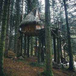 Another cabin goal...
