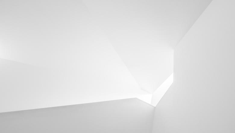 into the white  -