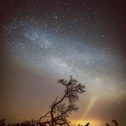 De Melkweg boven De Loonse en Drunense Duinen