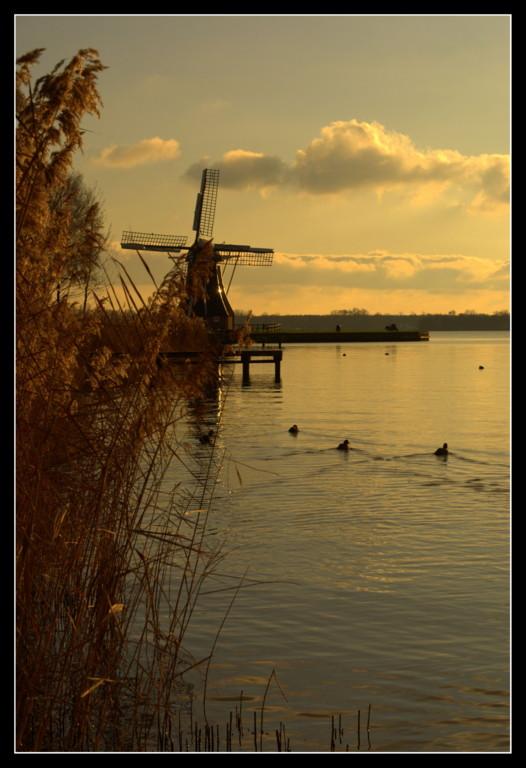 Hollands glorie...5 - Laatste in de molenreeks van afgelopen zondag...<br /> <br /> De molen op geheel andere wijze in beeld gebracht. Nu in warme k