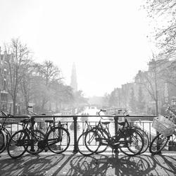 Love in misty Amsterdam