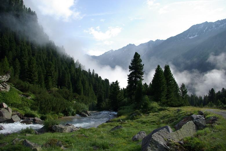 Alpenweide -