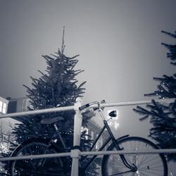 Leidse Winteravond