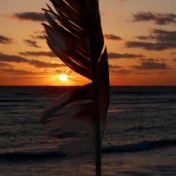 De laatste sunset op Sanibel