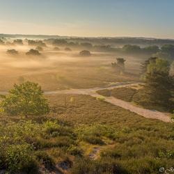 Brunssummerheide misty sunrise