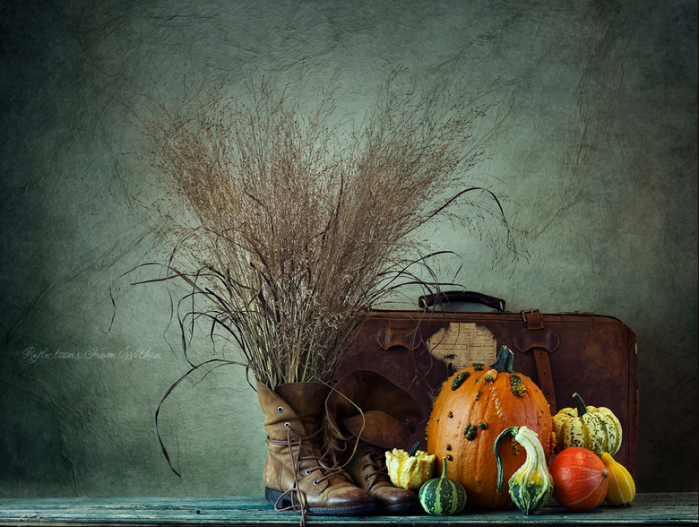 De herfst is in aantocht!
