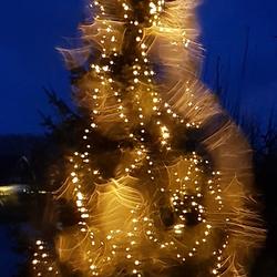 kerstboom gaat lightpainten