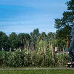Parkpop 2013 Den Haag