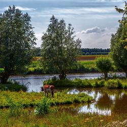 Vlietdijk