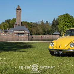 Yellow Beetle #1