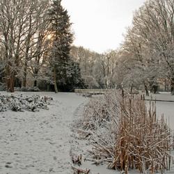 winter in meppel