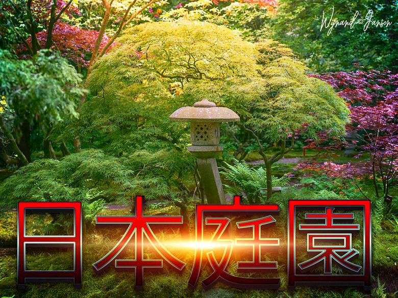 JAPANESE GARDEN - Genieten ga er eens heen.<br /> De Japanse Tuin is het pronkstuk van landgoed Clingendael. Den Haag. Hier zijn prachtige en zeldzam
