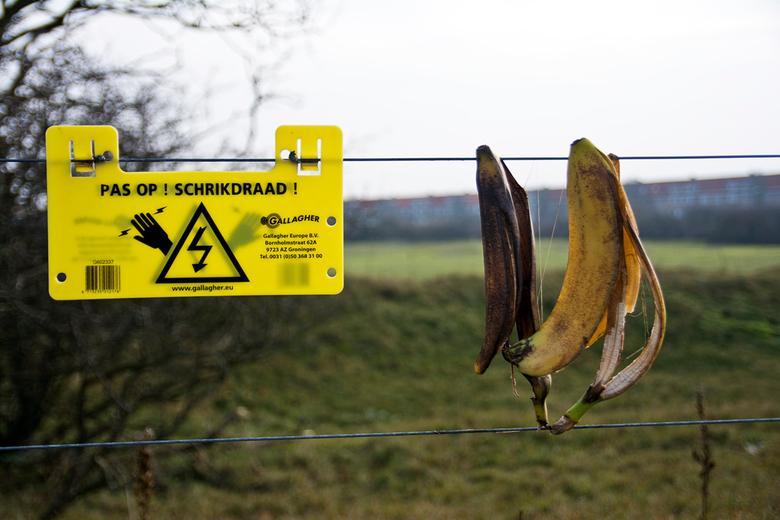 Hoge voltage - Zal die bananenschillen een zorg zijn.