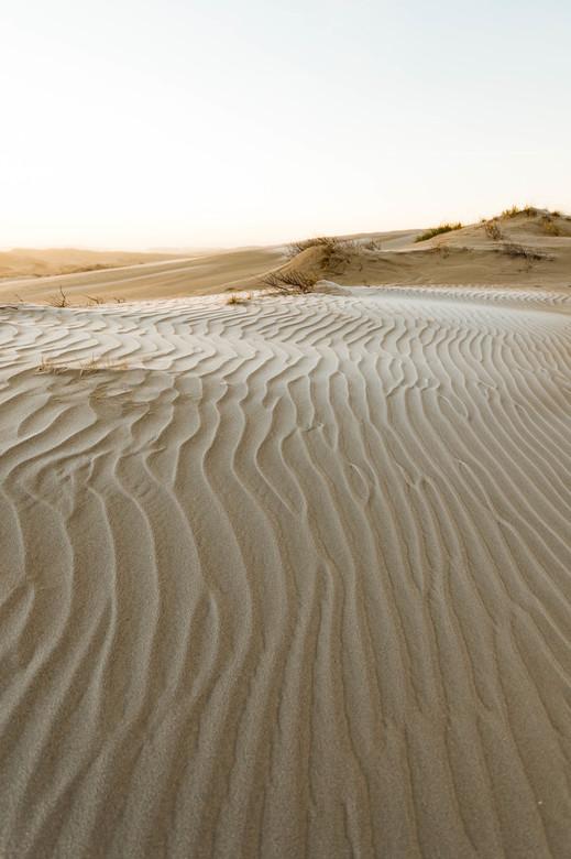Nederlandse woestijn
