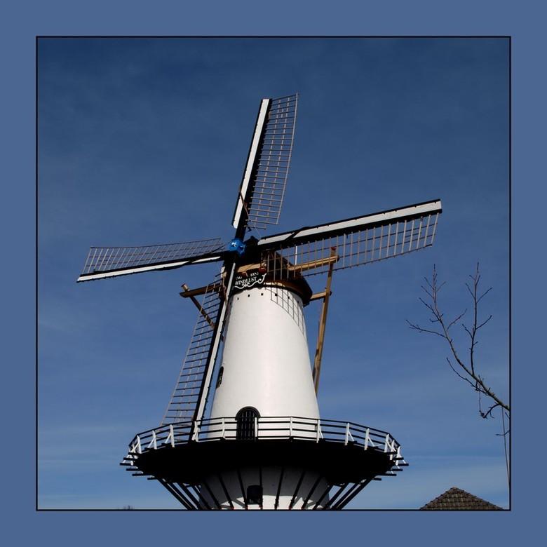 Windlust Westmaas - De molen Windlust is een in 1864 aan de Smidsweg in Westmaas gebouwde korenmolen die tot 1952 in bedrijf was. De familie Leeuwenbu