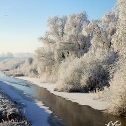 Winters landschap in Assenede