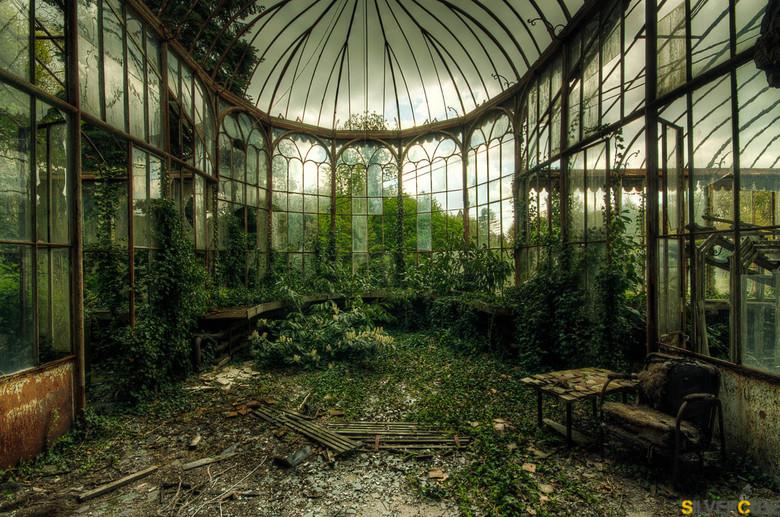 Greenhouse - Dit plaatje is geschoten, in een oud vervallen kasteel in belgie, het begon net te regenen toen we naar binnen liepen, waardoor de sfeer