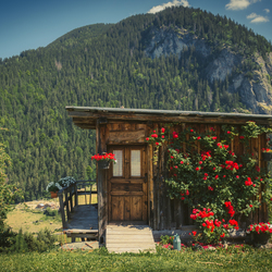 A cabin in Le Champel.