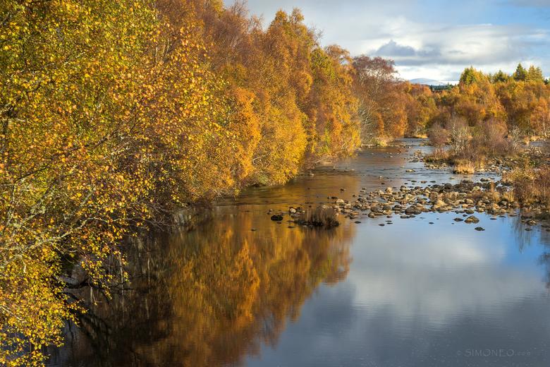 Spey - De afgelopen herfst was een explosie van kleur in Schotland. Het gouden kleurtje van de berken contrasteerde prachtig met de hemelsblauwe lucht