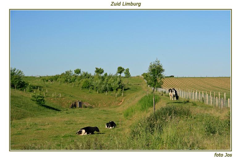 Limburgs landschap - 'n echt Limburgs landschap nabij Ransdaal. Ieder bedankt voor de reactie op mijn vorige upload. gr.jos
