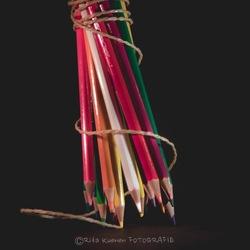 Potloden in kleur