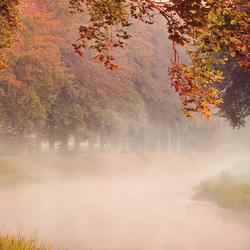 Herfst langs de Schipbeek