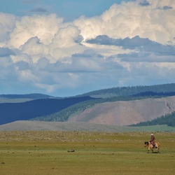 Ruiter in de Orkhonvallei, Mongolië