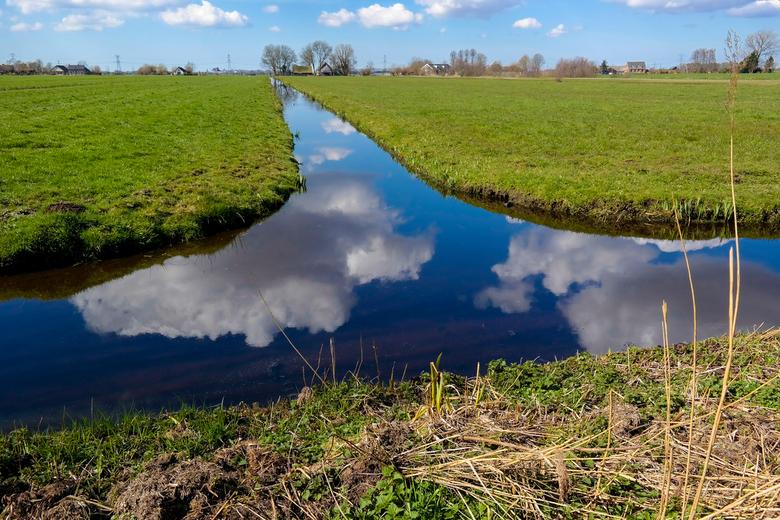 Polderlandschap -