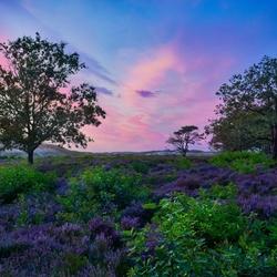 Schoorl Sunset HDR