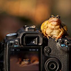 Masterclass fotografie