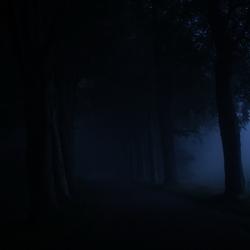 Er is een weg, er is licht. Je moet alleen goed kijken