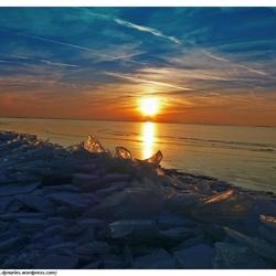 Kruiend ijs op Oostvaardersdijk