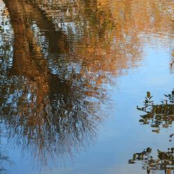 De Herfst weerspiegeld