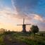 Neerlandsch hete zomerochtend