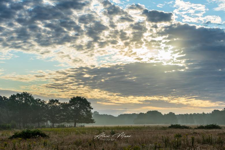 Cloudy Sky - Prachtige wolkenlucht tijdens wandeling in de ochtend.. Ook met lage grondmist voor een fijn sfeertje