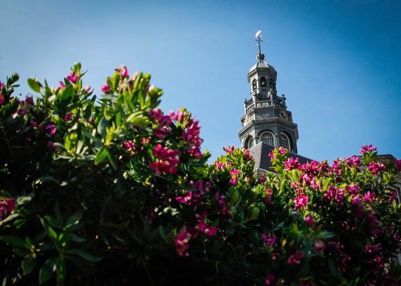 Stadhuistoren in de bloemetjes -