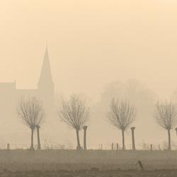 Ooij in de mist