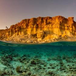 School vissen op zoek naar eten en bescherming bij zonsondergang in de Rode Zee, Egypte.