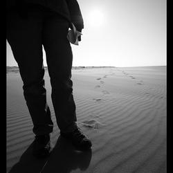 Strandloopster