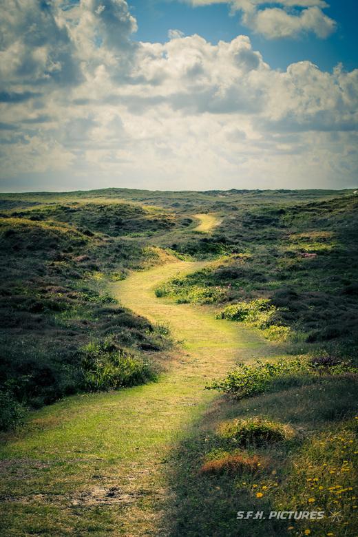 Texels graspad -