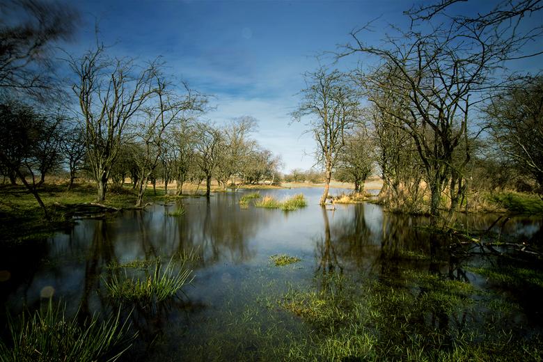 Swamp - AWD lekker onder water.<br /> Groet, Djurre