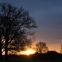 zonsopgang boompje doldersummerveld