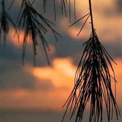 Sunset at Kauia