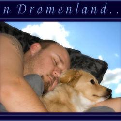 In dromenland