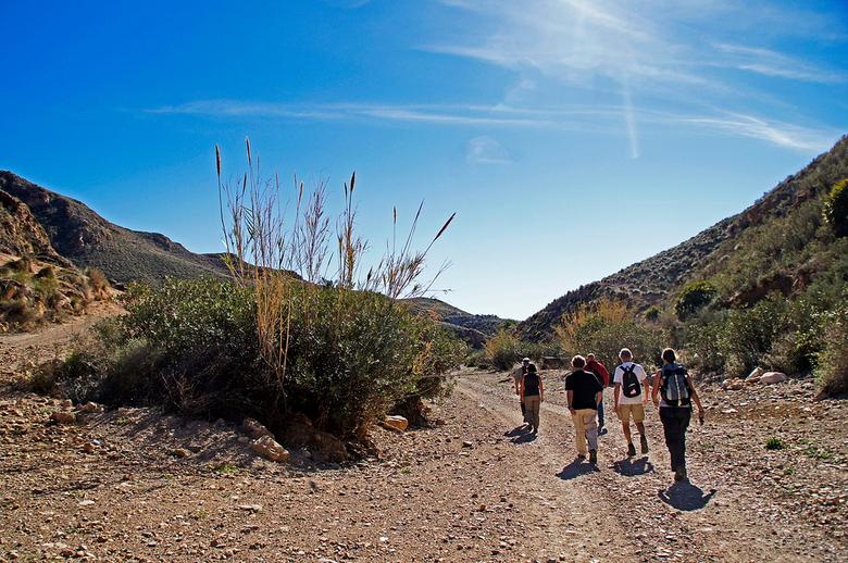 Wandeling - Vandaag weer voor het eerst een wandeling gedaan. Even jullie jaloers maken, het was 22 graden. Gr. Nel